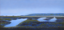 Summer Marsh (Pigeon Island)